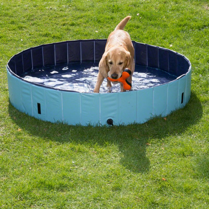 60405_dog_pool_mit_hund_03_7__1592487336_241