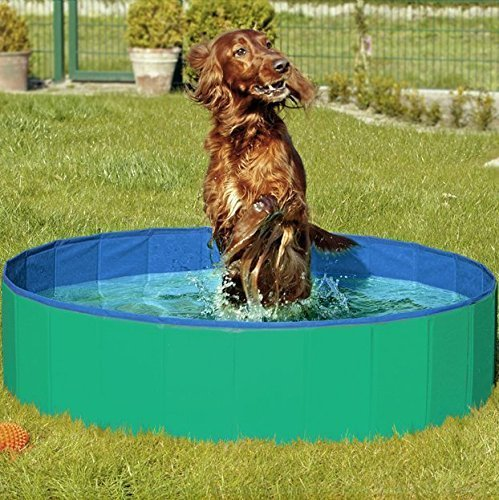 catzndogz_Artikelbild_Doggy_pool4_ml__1592564097_702